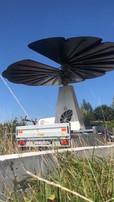 e-solaire smartflower.mp4