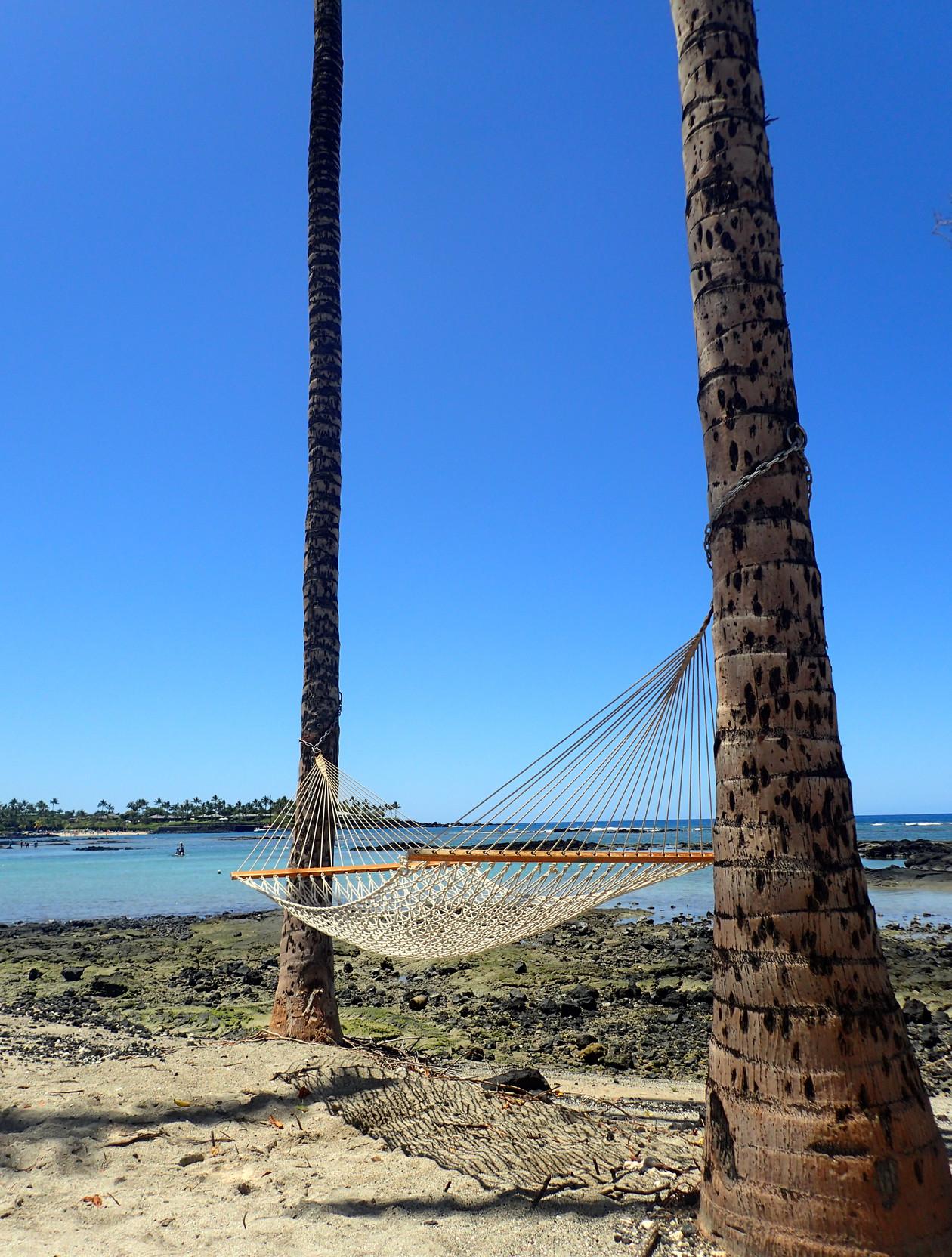 Resting.....Kauai.