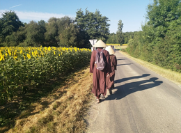 Walking with Monks, Plum Village.....France.