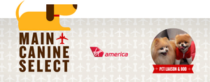"""Flying does not have to be """"ruff"""" any longer. Image from Virgin America."""