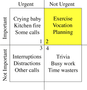 Merill Covey Matrix