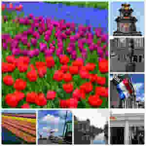 Scenes from around Amsterdam. Photos: John Nguyen | AirlineReporter