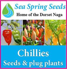 Sea Sprig Seeds