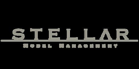 stellarModelsBezTla (1)_edited.png