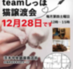 4880043E-16C8-4AD3-9BF4-753823BAFE60.jpg