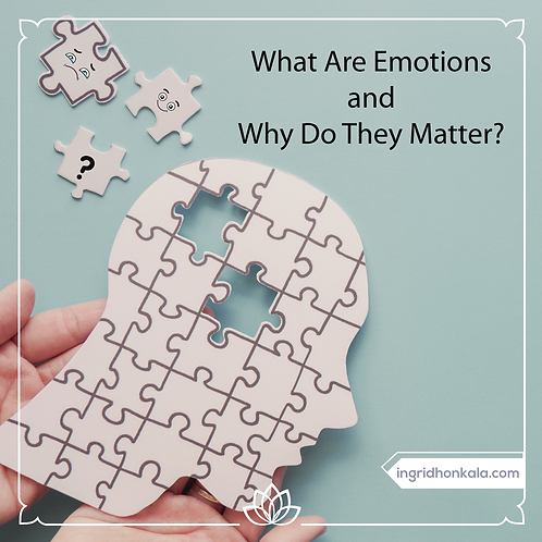 Monthly Mentoring with Ingrid Honkala, Apr 13, 2021 - What Are Emotions?