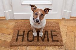 home energy price comparison