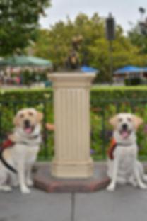 PhotoPass_Visiting_Disneyland_Park_403317857481.JPG