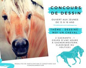 Concours : Dessine-moi un cheval! (13 à 18 ans)