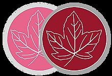 ahorn logos1.png