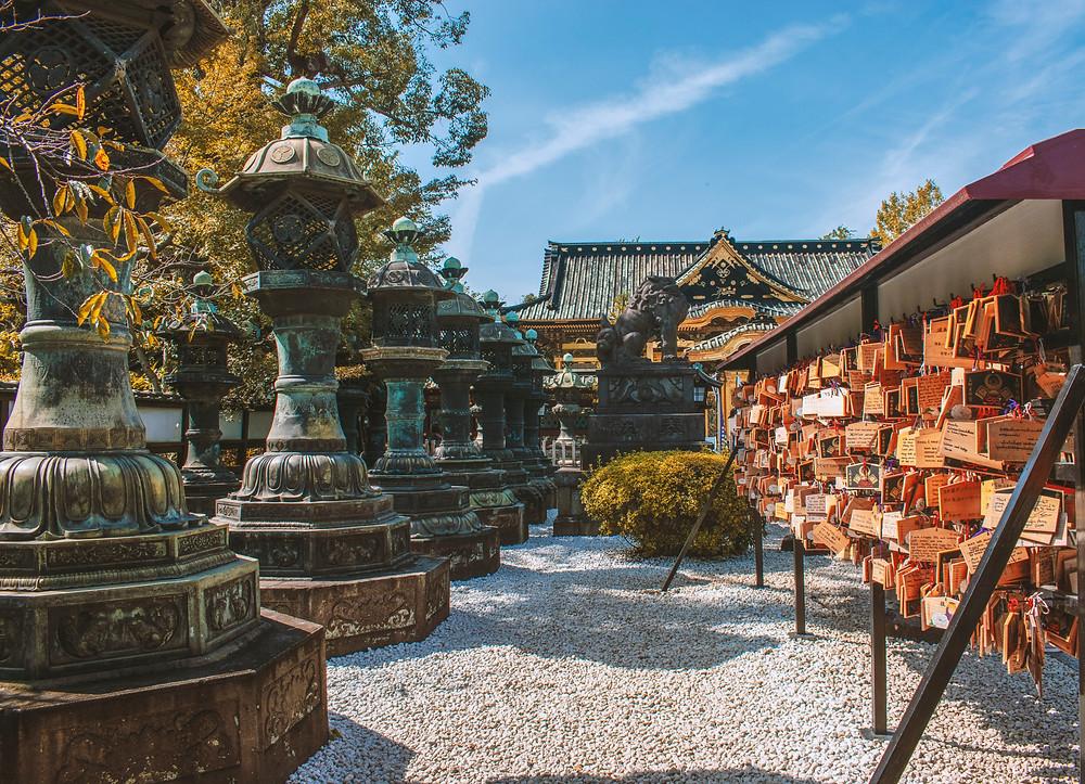 japan shinto shrine prayer autumn