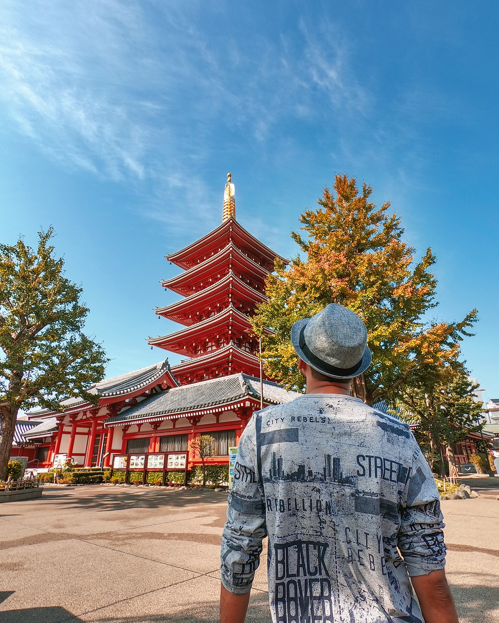 pagoda japan shinto shrine fall autumn