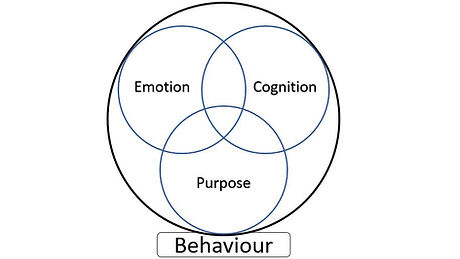 behaviour chart.JPG