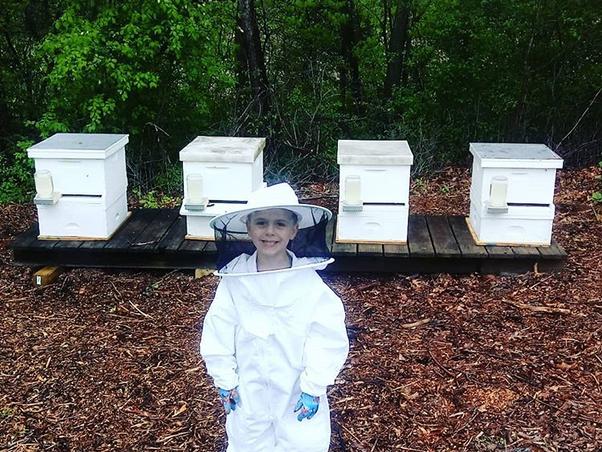 Bee Helpers
