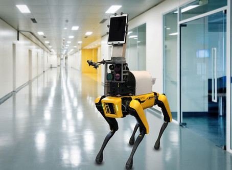 Hospital usa o cão-robô Spot para monitorar pacientes com COVID-19