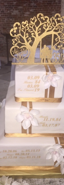 Anthony and Lynda's cake 3.jpg