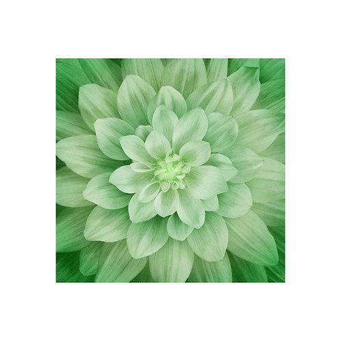 Dream Big Green Leaf Panel and Instructions