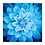 Thumbnail: Dream Big Atlanta Blue Quilt Kit
