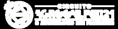 logo_h21_branco.png