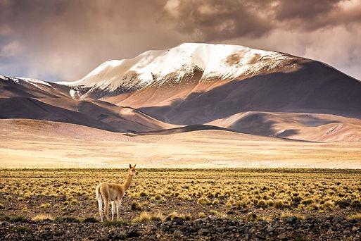 Salta-Argentina-Photo-credit-Senastian-d