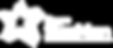Apresentação-Ding-Logo-Grupo-Starman-3_b