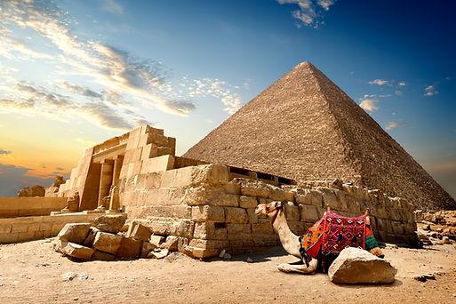 Cairo,-camel,-pyramide.jpg