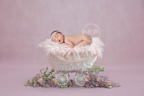 Marta Chodur Photography specializes in maternity, newborn, baby, children and family portrait photography. In studio or in home newborn sessions. Servicing Bergen County, Hudson County, Essex County, Morris County and more
