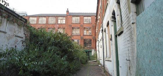 Overgrown courtyard