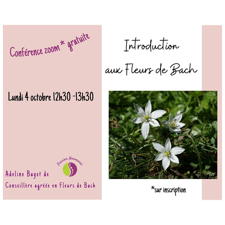 Introduction aux Fleurs de Bach
