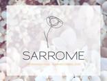 Sarrome - dESIGN 2.1.jpg