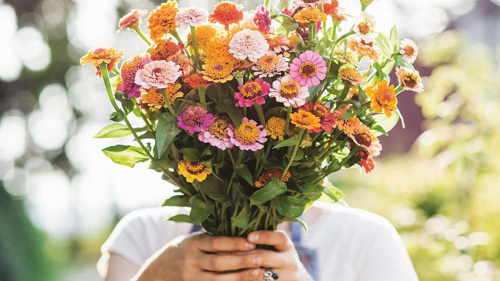 fiori locali km0 di stagione sostenibili bio