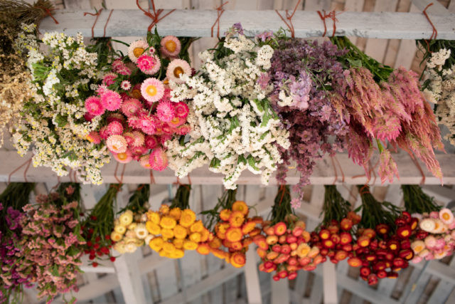 dried flowers organic local seasonal flowers delivery to Milan