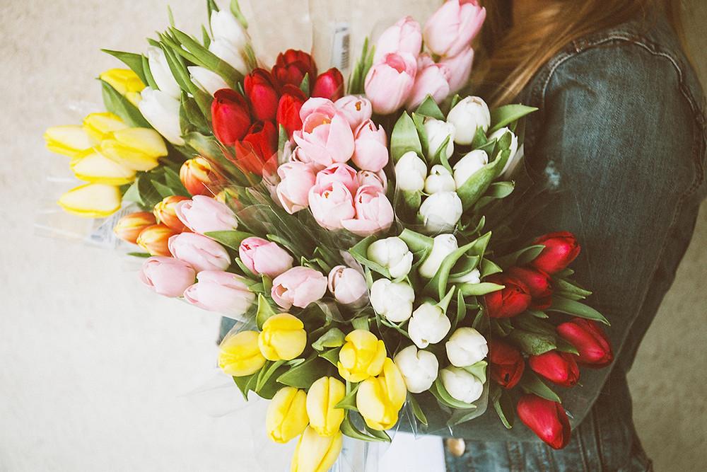 curiosità tulipani fiori freschi consegna domicilio milano gratis spedire mazzo di fiori