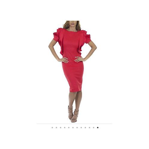 Laura Statement Sleeve Dress