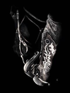 Saddled on Shaddow original available