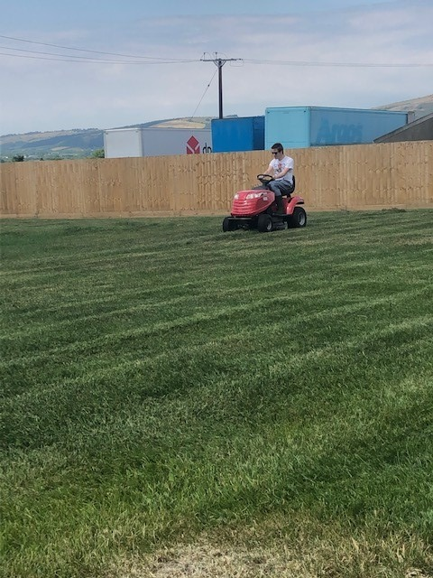 Cutting the lawn