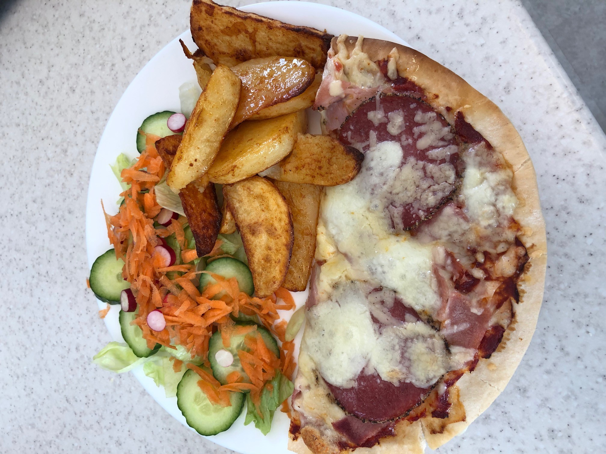Home made pizza wedges and salad