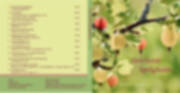 Beathe danish CD cover.png