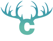 ACM Insurance Agency Logo
