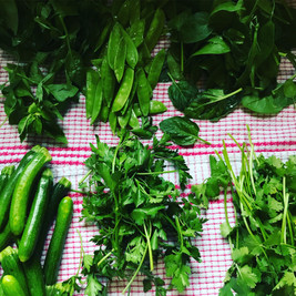 Flavours of Green