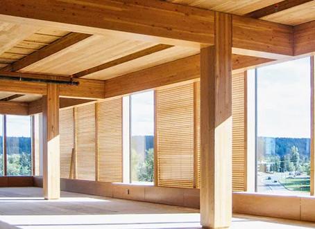 Primeiro prédio comercial de madeira será construído na Vila Madalena