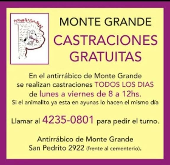MONTEGRANDE BS.AS.