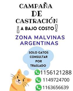 MALVINAS ARGENTINAS A BAJO COSTO