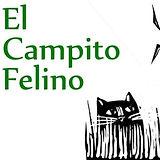 CAMPITO_edited.jpg