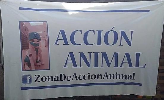 ACCIÓN ANIMAL CASTRACIONES