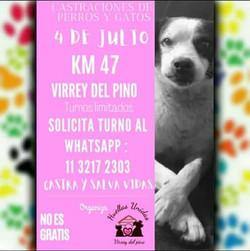 VIRREY DEL PINO 4 DE JULIO