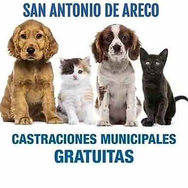 SAN ANTONIO DE ARECO BS.AS.