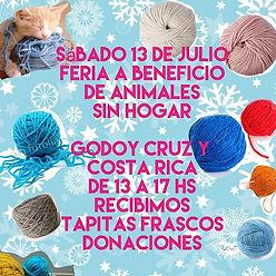 Sábado 13 de julio._Feria a Beneficio de