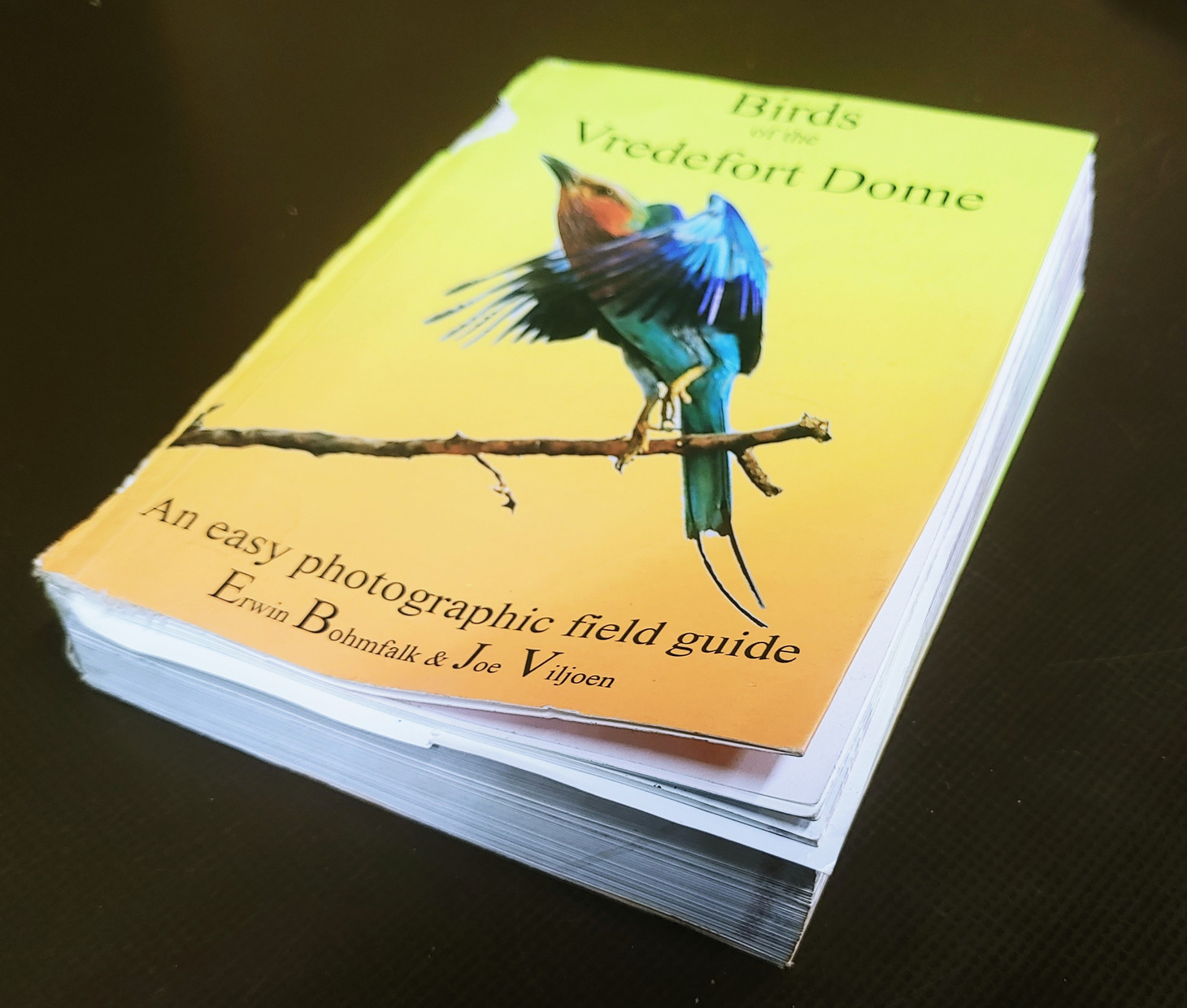 Birds of the Vredefort Dome.jpg