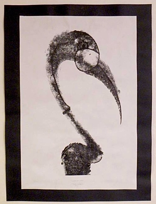 'bird study' 2014, embosed ink.